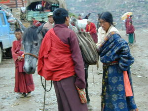 A Tibetan nun and nomad woman loading a horse.