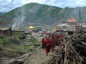 Monks walking home after attending religious lectures.