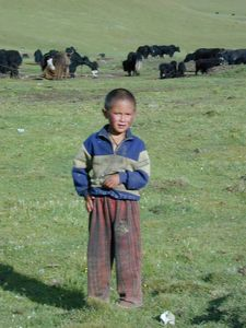 A young nomad boy.