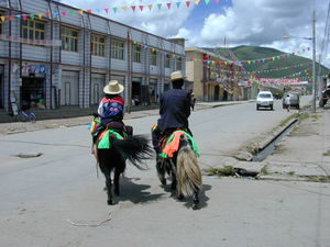 A Tibetan couple riding yaks decorated for the festival on the street in Serta.
