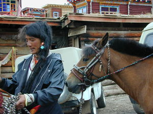A long haired nomad man leading horses on the street.