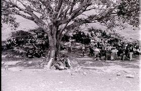 Village Panchayat (council) meeting in open air