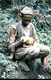 A Jaisi Bahun (high caste) examining jackfruit