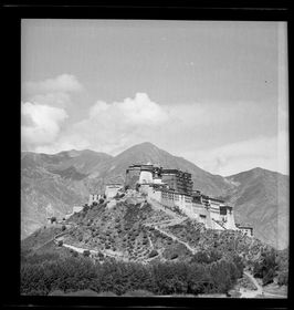 Potala seen from Chakpori with forested foreground. Copyright Pitt Rivers Museum, University of Oxford 2001.59.8.37.1